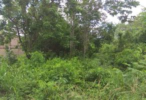 Foto de terreno industrial en venta en conocido , supermanzana 550, benito juárez, quintana roo, 0 No. 03