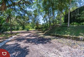 Foto de terreno habitacional en venta en consolapan , la purísima, coatepec, veracruz de ignacio de la llave, 0 No. 01