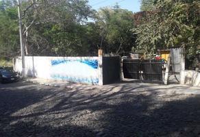 Foto de terreno habitacional en venta en constitución 60, comala, comala, colima, 0 No. 01