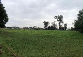 Foto de terreno comercial en venta en constitucion , san sebastián el grande, tlajomulco de zúñiga, jalisco, 0 No. 01