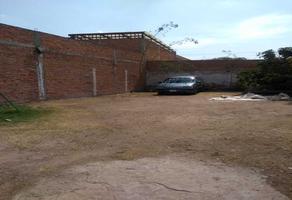 Foto de terreno habitacional en venta en constitucion , simón diaz, san luis potosí, san luis potosí, 0 No. 01