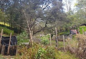 Foto de terreno habitacional en venta en contadero , contadero, cuajimalpa de morelos, df / cdmx, 0 No. 01