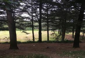 Foto de terreno habitacional en venta en  , contadero, cuajimalpa de morelos, df / cdmx, 17405875 No. 03