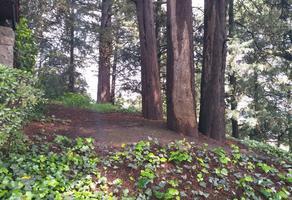 Foto de terreno habitacional en venta en  , contadero, cuajimalpa de morelos, df / cdmx, 17978627 No. 01