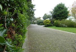 Foto de terreno habitacional en venta en  , contadero, cuajimalpa de morelos, df / cdmx, 0 No. 02