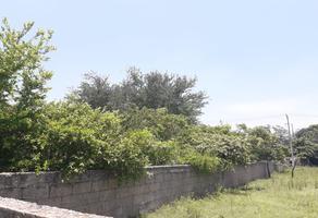 Foto de terreno comercial en venta en corcho , lomas de miralta, altamira, tamaulipas, 7960336 No. 01