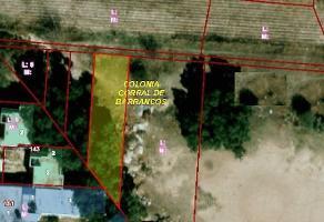 Foto de terreno habitacional en venta en  , corral de barrancos, jesús maría, aguascalientes, 13942487 No. 01