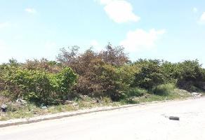 Foto de terreno habitacional en renta en  , corredor industrial, altamira, tamaulipas, 11699678 No. 01