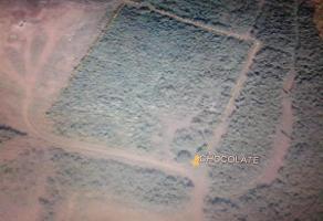 Foto de terreno habitacional en venta en  , corredor industrial, altamira, tamaulipas, 13147292 No. 01