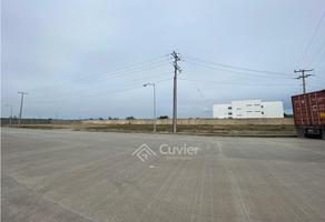 Foto de terreno habitacional en renta en  , corredor industrial, altamira, tamaulipas, 18764123 No. 01