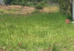 Foto de terreno comercial en venta en cointzio, morelia, michoacán , coíntzio, morelia, michoacán de ocampo, 15846480 No. 01