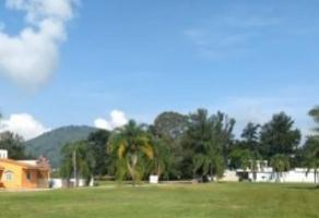 Foto de terreno habitacional en venta en coto melchor 37, cajititlán, tlajomulco de zúñiga, jalisco, 0 No. 01