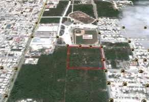 Foto de terreno habitacional en venta en  , cozumel centro, cozumel, quintana roo, 5573905 No. 01