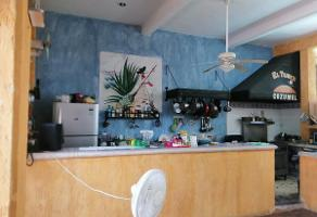 Foto de local en renta en  , cozumel, cozumel, quintana roo, 17619588 No. 01