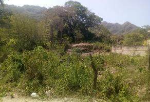 Foto de terreno habitacional en venta en  , cristóbal colon, puerto vallarta, jalisco, 0 No. 01