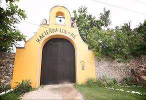 Foto de rancho en venta en  , croc, kanasín, yucatán, 13852158 No. 01