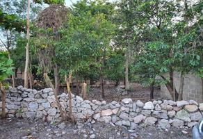 Foto de terreno habitacional en venta en  , croc, kanasín, yucatán, 0 No. 01
