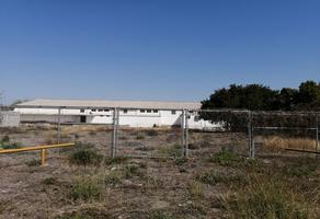 Foto de terreno comercial en renta en  , cruz verde, montemorelos, nuevo león, 0 No. 01