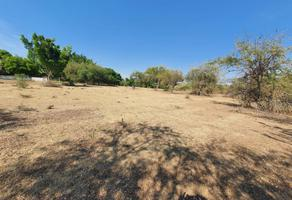 Foto de terreno habitacional en venta en  , cuahuixtla, amacuzac, morelos, 0 No. 01