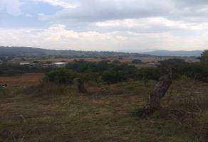 Foto de terreno comercial en venta en  , cuanajo, pátzcuaro, michoacán de ocampo, 0 No. 01