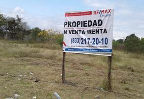 Foto de terreno comercial en renta en cuauhtemoc , altavista ii, el mante, tamaulipas, 6802306 No. 01