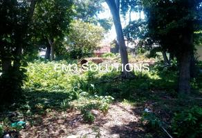 Foto de terreno habitacional en renta en  , cuauhtémoc, carmen, campeche, 19418232 No. 01