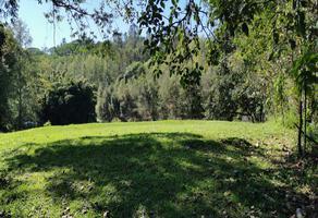 Foto de terreno habitacional en venta en  , cuauhtémoc, coatepec, veracruz de ignacio de la llave, 0 No. 01