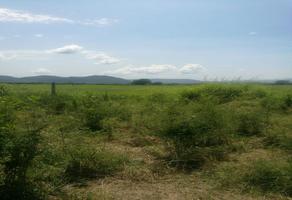 Foto de terreno comercial en renta en cuauhtémoc- colima , la estancia, colima, colima, 9164186 No. 01