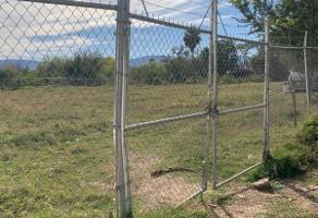 Foto de terreno habitacional en venta en cuauthemoc , chantepec, jocotepec, jalisco, 11075698 No. 01