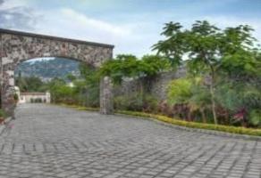 Foto de terreno habitacional en venta en  , cuernavaca centro, cuernavaca, morelos, 11733794 No. 01
