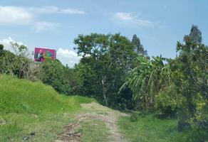 Foto de terreno industrial en venta en cuernavaca , cuernavaca centro, cuernavaca, morelos, 6847319 No. 01