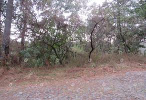 Foto de terreno habitacional en venta en cuernavaca, morelos t40, del bosque, cuernavaca, morelos, 19389482 No. 01