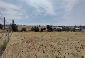 Foto de terreno habitacional en venta en cuernito s/n , tepetongo, toluca, méxico, 0 No. 01