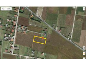 Foto de terreno habitacional en venta en cuervos 230, san miguel zacango, toluca, méxico, 0 No. 01