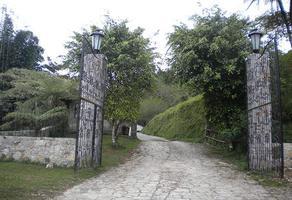 Foto de terreno comercial en venta en cuetzalan , cuetzalan del progreso, cuetzalan del progreso, puebla, 9281435 No. 01