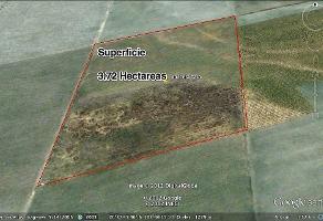 Foto de terreno habitacional en venta en cuisillos , tala centro, tala, jalisco, 5714275 No. 01