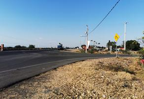 Foto de terreno habitacional en venta en  , cumuatillo, venustiano carranza, michoacán de ocampo, 19971340 No. 01