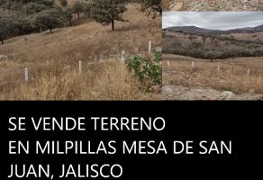 Foto de rancho en venta en Paseos del Sol, Zapopan, Jalisco, 21419339,  no 01
