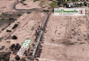 Foto de terreno habitacional en venta en Campestre, Mexicali, Baja California, 22620081,  no 01
