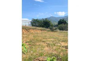 Foto de terreno habitacional en venta en San Pablo Etla, San Pablo Etla, Oaxaca, 9577199,  no 01