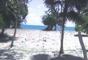 Foto de terreno comercial en venta en Plutarco Elías Calles, Othón P. Blanco, Quintana Roo, 11214105,  no 01