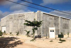 Foto de nave industrial en renta en Francisco de Montejo II, Mérida, Yucatán, 7761047,  no 01