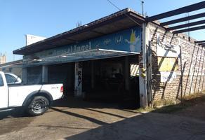 Foto de terreno habitacional en venta en  , dámaso cárdenas, sahuayo, michoacán de ocampo, 19971420 No. 01