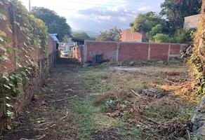 Foto de terreno habitacional en venta en david alfaro sequeiros , 28 de octubre, uruapan, michoacán de ocampo, 9440268 No. 01