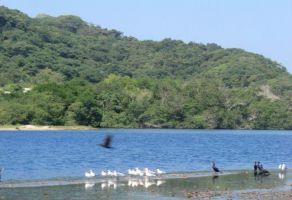 Foto de terreno habitacional en venta en Chacahua, Villa de Tututepec de Melchor Ocampo, Oaxaca, 6357495,  no 01