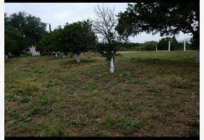 Foto de terreno habitacional en venta en ddd 0000, calles, montemorelos, nuevo león, 0 No. 01