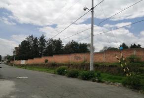 Foto de terreno habitacional en venta en de los chincolos , de los chincolos, tlalmanalco, méxico, 16762472 No. 01