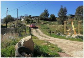 Foto de terreno habitacional en venta en de servicio o, san josé, tecate, baja california, 0 No. 01