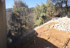 Foto de terreno habitacional en venta en  , del bosque, cuernavaca, morelos, 13635064 No. 01