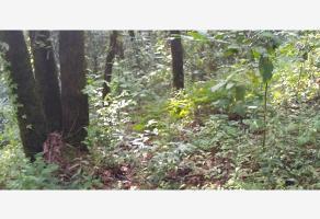 Foto de terreno habitacional en venta en  , del bosque, cuernavaca, morelos, 17228001 No. 01